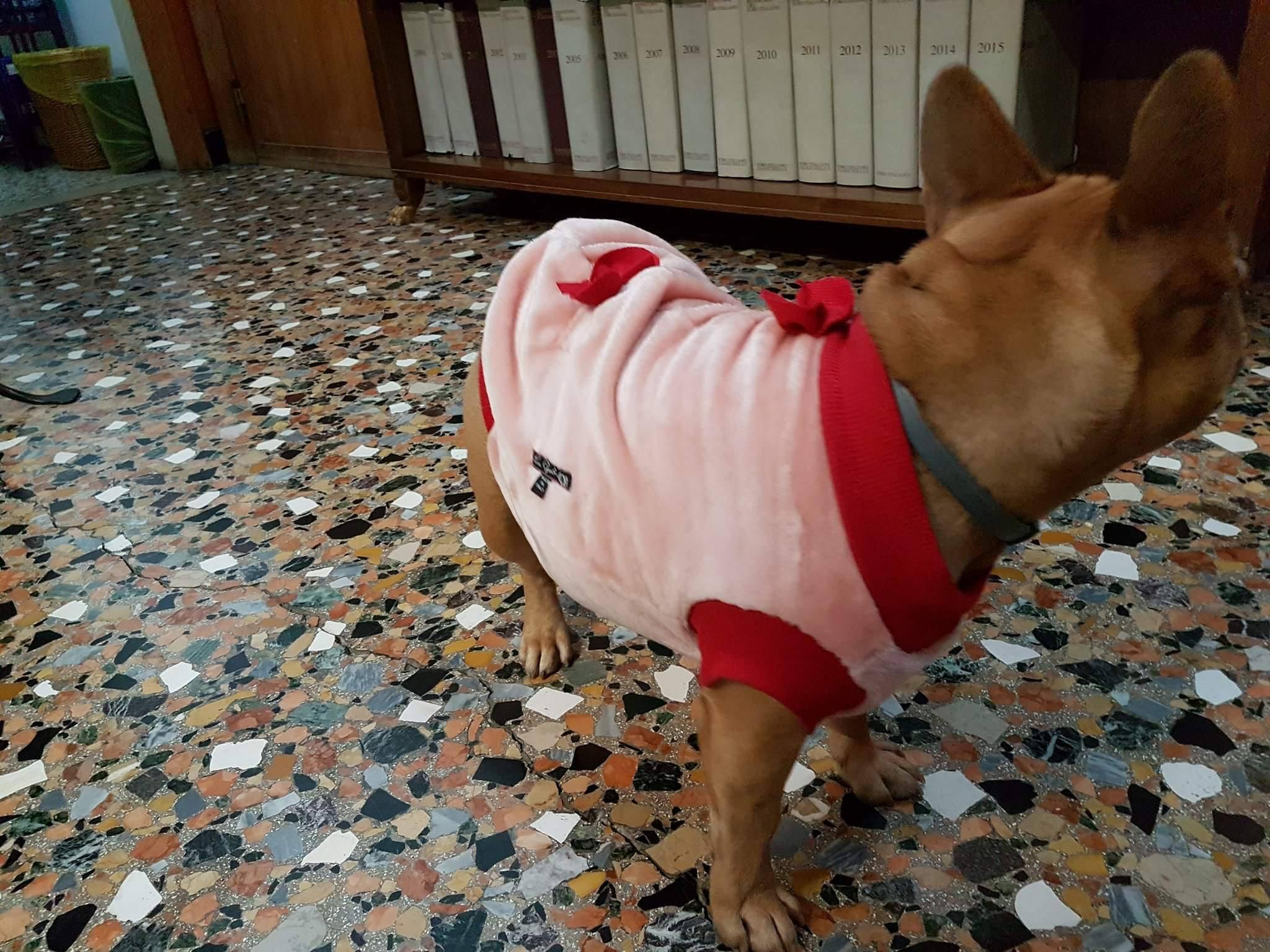 Mika con lupetto rosa
